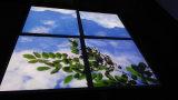 Quadratische Panellight Decken-Beleuchtung 600X600 der Himmel-/Wolken-Richtungs-LED