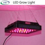 높은 양 LED는 제광기와 타이머에 가볍게 증가한다 (렌즈에)