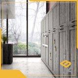 Apple du grain du bois Papier d'impression décoratif pour l'étage