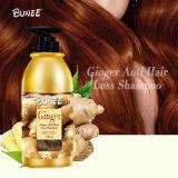 Bunee 250ml faible MOQ organiques meilleures naturel nourrissant Shampooing anti-perte de cheveux au gingembre