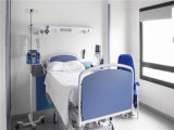 2017년 병원 폴리에스테 /Cotton 침구 깃털 이불 덮개 (놓으십시오)