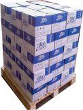 20kg/Carton 장식적인 물고기 소금