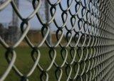 Frontière de sécurité galvanisée de maillon de chaîne avec le prix le plus inférieur