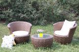 Présidence extérieure de loisirs de meubles de rotin et Table-10