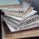 El panel de pared de aluminio material del panal de la decoración incombustible e impermeable del edificio (HR496)