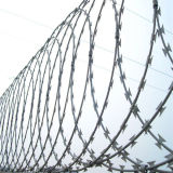 La prison de DIP à chaud la lame de rasoir sur le fil Prix de clôture