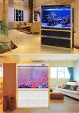 تصميم حديثة فسحة أكريليكيّ بلاستيكيّة مربّعة حوض مائيّ [فيش تنك] لأنّ فندق بيتيّة زخرفيّة