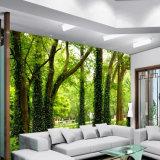 Crear la impresión al aire libre durable de los murales para requisitos particulares del papel pintado de los gráficos