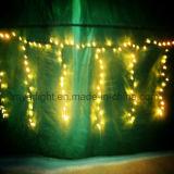 Напольный свет праздника рождества света занавеса украшения СИД