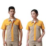 짧은 소매를 가진 의복 공장 수출 노동자 착용 일 제복