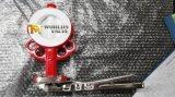 Het Standaard Kneedbare Ijzer PTFE die van DIN de Concentrische Vleugelklep van het Handvat van het Wafeltje Voert