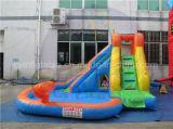 ビニール膨脹可能な水スライド、プールが付いている子供のスライド