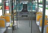 Asiento plástico del omnibus para el omnibus de la ciudad