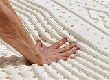 알로에 Vera Serta 잠 과학 임금 Natural Latex Foam Mattress