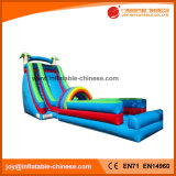 Inflable gigante verano caliente Jungle Park Diapositiva (T11-099)