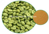 De groene Bonen van de Koffie halen Totale Chlorogenic Zuren 10%~70%