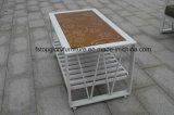 Sofá de jardim seccional de quintal exterior de design novo para lazer (TG-1336)