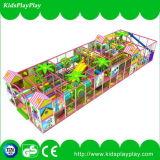 2016人の公園の運動場の子供のスライド装置