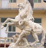 Elefante cinzento do granito/Bea/pedra animal do gato/cavalo/pássaro que cinzela/escultura animal/estátua animal