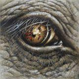 フレームが付いている動物の目のキャンバスの油絵