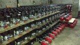 Zuverlässige Qualität, die All Night 650 Watt-Benzin-Generator für Afrika-Markt laufen lässt