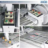 Het Vastbinden van de hoog-Lijst van Hualian 2017 de Automatische Machine van de Band (kzw-8060/D)
