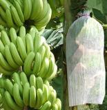 Sacs matériels non tissés de banane de 15 grammes