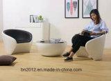 Cadeira de lazer de fibra de vidro famosa (EC-019)