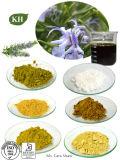 A fábrica fornece o fornecedor de 100% Ursolic/o fabricante ácidos naturais extrato de Rosemary