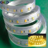 Il LED mette a nudo 220V 110V 5630 60LEDs 2700k 3000k 4000k 6000k
