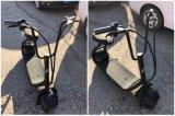 Motocicleta elétrica com 350W 48V/10ah