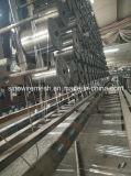 Sailin ha galvanizzato la rete metallica del coniglio