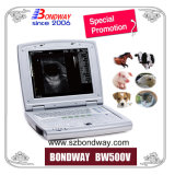 Bewegliche Veterinärultraschall-Maschine, Mindray Ultraschall, USG, Ultraschall-Scan-Maschine, medizinische Ausrüstung, Veterinärultraschallscanner
