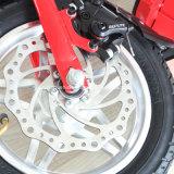 Bici elettrica della città ad alta velocità del Hummer del motorino del freno a disco di F/R 36V300W E