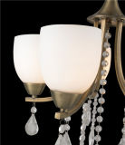 Europäische Eisen Penant Beleuchtung, Lampe mit Glas (D-8146/3)