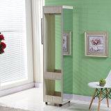 De beste Verkopende Eenvoudige Goedkope Garderobe van de Spiegel