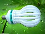 T4 45W / 85W Lotus Energy Saving Lamp avec CFL (BNFT4-LOTUS-A)