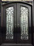 Portello dell'ultimo ferro decorativo di esterno doppio con lo schermo