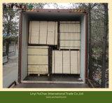 기화기 P2 증명서 미국 시장을%s UV 자작나무 합판