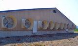 Los gases de ganado maquinaria agrícola de aves de corral del ventilador extractor de Tailandia