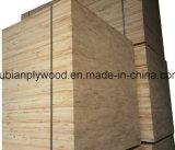 placage Blockboard de 15mm/18mm 1220*2440mm avec le faisceau de Falcata