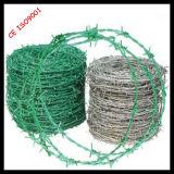 El verde de plástico (PVC) cercas de alambre recubierta de