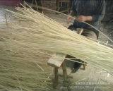 Les tiges de purificateur d'air diffuseur Reed