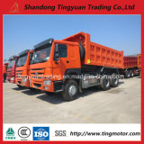 Clouded HOWO 6X4 Tipper Truck 336 HP Load 30 Your for Sale