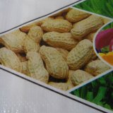 Qualitäts-Plastik-pp. gesponnener Beutel für Reis oder Mehl