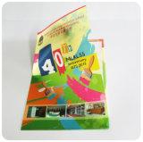 Plastic pp A4 het dossierhouder van de douane (de omslag van het zakkendossier)
