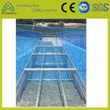 높은 단단한 수영장은 조정가능한 알루미늄과 움직일 수 있는 아크릴 단계를 설치한다