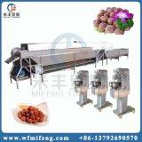 Aço inoxidável Meatball Maker a máquina