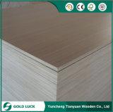 WBP excelente mobiliário de qualidade diferentes cores Eco Madeira contraplacada 1220x2440mm