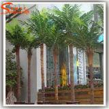庭の景色の人工的なココヤシの木の木